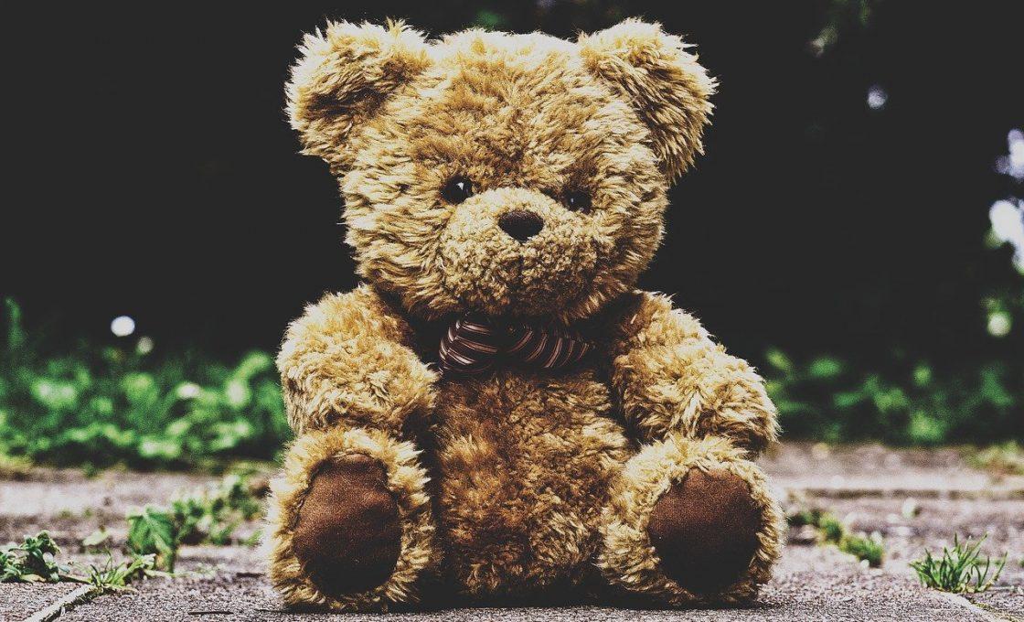 Idée Cadeau: l'ours en peluche avec un cœur!